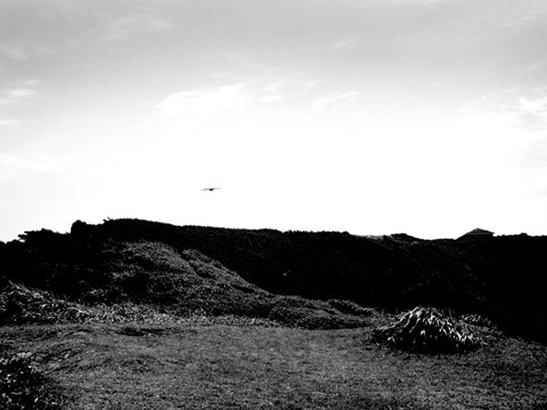 landscape / 000004
