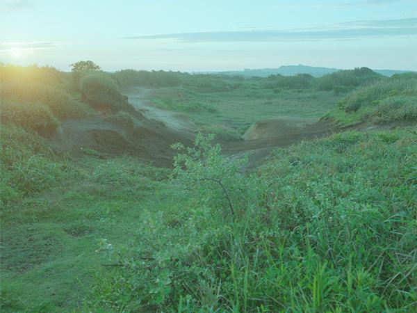landscape / 000005